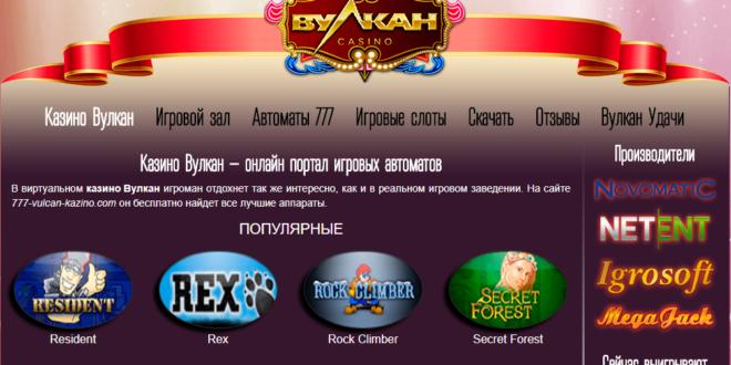 kazino net